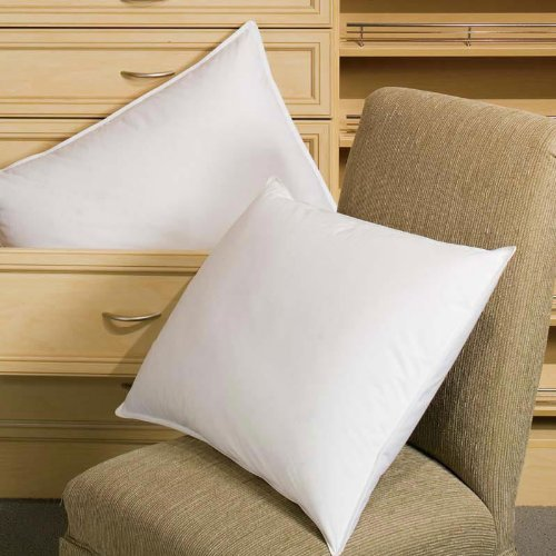 Where You Can Buy Downlite 50 50 Pillows