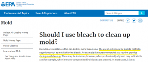 excerpt from Environmental Protection Agency about using bleach to clean up mold